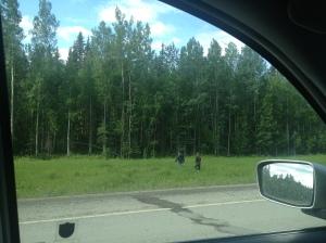 John and Lydian walking through the ditch in the Yukon Territory.